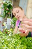 小心植物的卖花人 库存照片