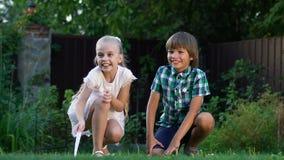 小愉快的孩子追捕小猫的在草坪附近,儿童的室外游戏 影视素材