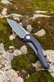 小折刀 垂直的射击 在石头和青苔的一把刀子 免版税图库摄影