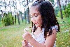小拉丁女孩吹的蒲公英在夏天公园 库存图片