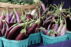 小指茄子在农夫市场上 免版税库存图片
