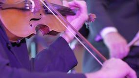 小提琴仪器,交响乐团 股票视频