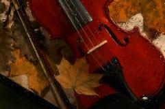 小提琴和秋叶横跨水在玻璃滴下 库存图片