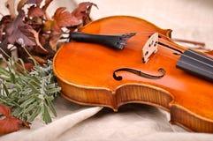 小提琴和秋叶 图库摄影