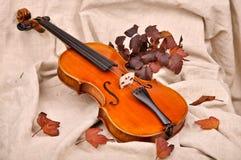 小提琴和秋叶 免版税图库摄影