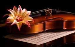 小提琴在音乐笔记本,被隔绝的顶面美丽的花说谎 库存照片