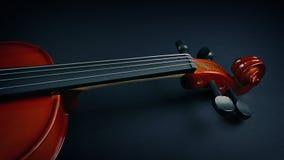 小提琴显露在天鹅绒下 股票视频