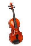 小提琴白色 库存图片