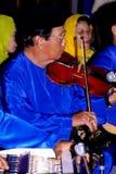 小提琴音乐作用 免版税库存图片