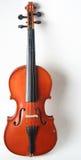 小提琴 免版税库存照片