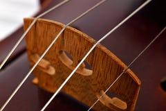 小提琴串和小提琴身体 免版税库存照片