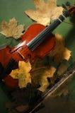 小提琴和秋叶 免版税库存图片