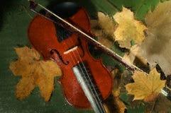 小提琴和秋叶 免版税库存照片