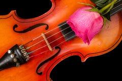 小提琴和红色玫瑰在黑背景 库存照片