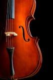 小提琴在暗室 免版税库存图片