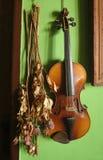 小提琴末端弓 免版税库存图片