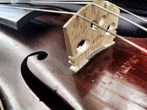 小提琴桥梁和身体 免版税库存图片