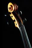 小提琴纸卷脖子 免版税库存照片