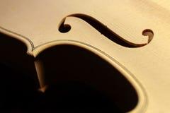 小提琴身体 免版税库存照片