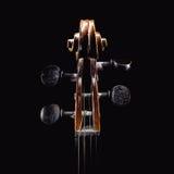 小提琴顶头细节 库存照片