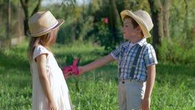 小朋友耳语在夏天公园,可爱的男孩给一朵花并且拥抱美丽的女孩 股票视频