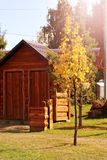 小木房子和秋天树 库存照片