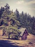 小木房子在山的一棵树下 免版税库存照片