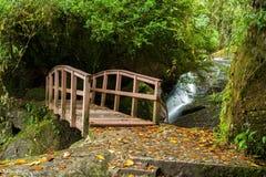小木桥梁在有瀑布的雨林里 免版税图库摄影