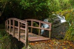 小木桥梁在有瀑布的雨林里 免版税库存图片