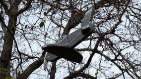 小木飞机在树在风垂悬并且转动 股票视频