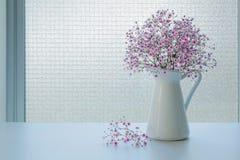 小桃红色麦在窗口背景的白色水罐开花 免版税图库摄影