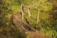 小桥梁在森林里 库存照片