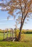 小桥梁在秋天树下 免版税库存图片