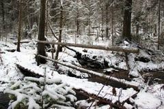 小桥梁通过冬天小河 免版税库存图片