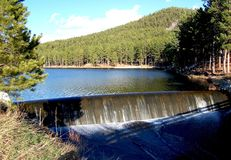 小水坝在有附近的森林的湖 库存照片