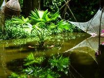 小池塘。 库存图片
