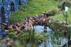 小池塘在庭院里 免版税库存照片