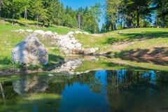 小池塘在阿尔卑斯的森林 免版税库存照片