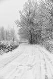 小没有整理好的在雪所有盖的路和树 免版税库存照片