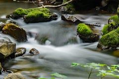 小河、岩石和青苔- 3 免版税库存图片