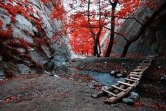 小河人行桥道路桥梁红色留下秋天山沟岩石 免版税库存图片