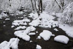 小河冬天 免版税库存照片