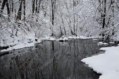 小河冬天 库存图片