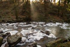 小河冻结的爱尔兰语 免版税库存图片
