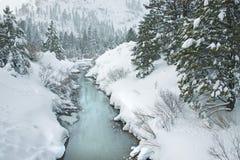 小河冻结 图库摄影