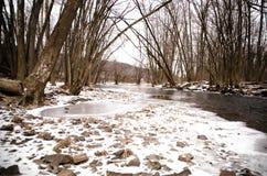 冻小河和小岩石 免版税库存照片
