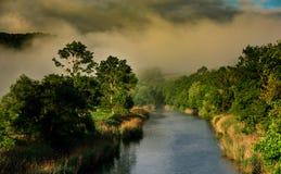 小河和树在日落 免版税库存图片