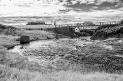 小河和桥梁 免版税库存图片