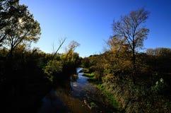 小河和森林在秋天 免版税库存照片