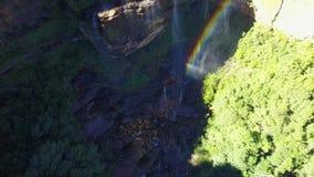 小河和瀑布在长得太大的森林的山 股票录像